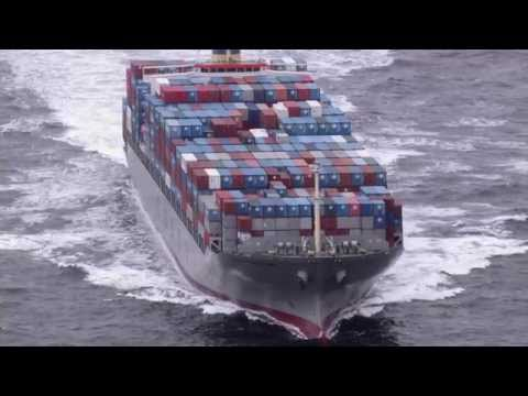 Preventing Moisture Damage in Containerized Cargo