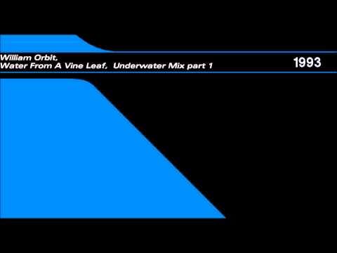 William Orbit - Water From A Vine Leaf [Underwater Mix part 1] mp3
