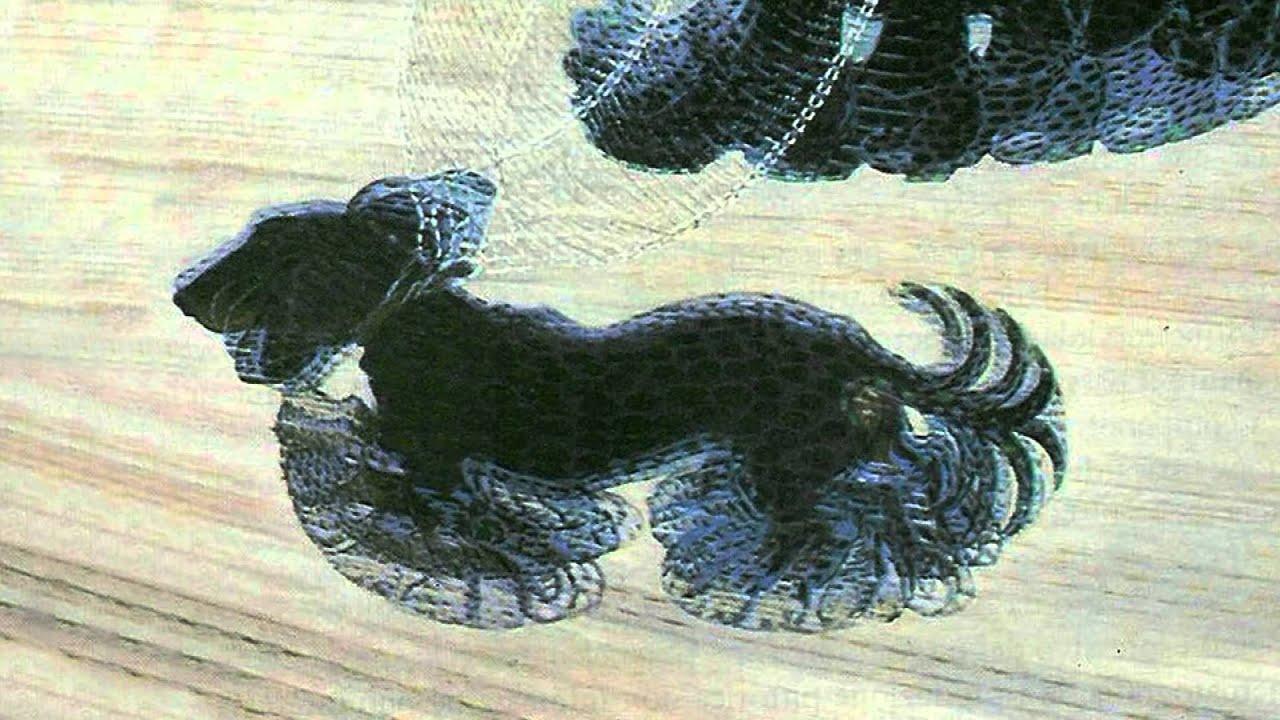 Dinamismo di un cane al guinzaglio youtube - Colorazione immagine di un cane ...