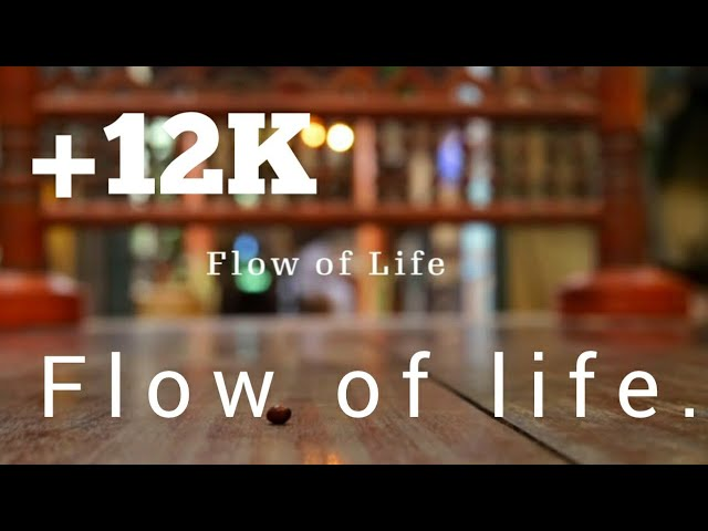 Flow of life | Sameer Binsi | Jisham JB | Jishana Backer | Ashir MS | Shan Ahamed