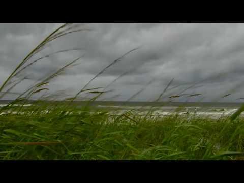 VIDEO: Hurricane Matthew - Scenes from Delray Beach