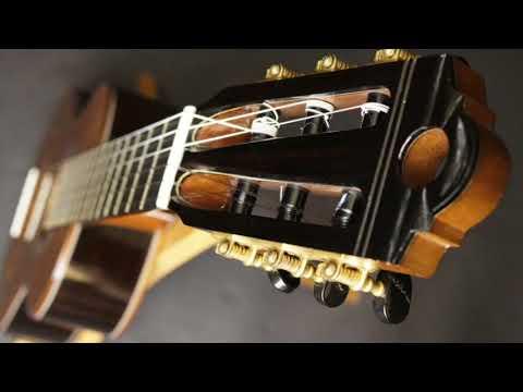 Wingert de Torres Classical Guitar at Guitar Gallery