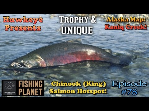 Fishing Planet - Ep. #78:  Alaska Map - TROPHY and UNIQUE Chinook (King) Salmon Hotspot!