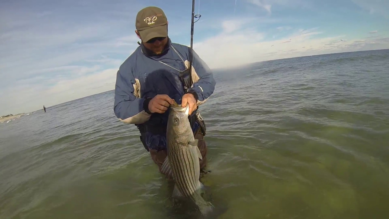 Part 3 year in review 2016 boat surf and kayak fishing for Surf fishing nj license