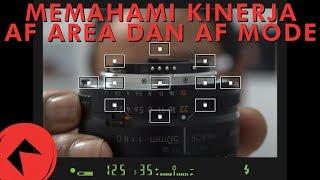#227 MEMAHAMI KINERJA AF AREA & AF MODE