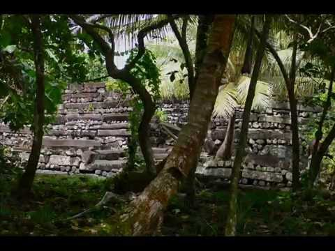 Wholesale Shamanic Herbs Micronesia 2009