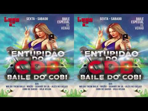 == MEGA AO VIVO NO BAILE DO CDB PART 2 [DJ SCOOBY DU JA]