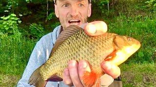 Золотой карась на поплавок Рыбалка на поплавочную удочку