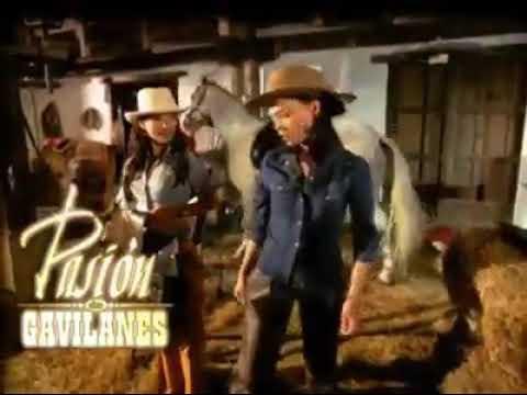 Download PASION DE GAVILANES CAPITULO 19