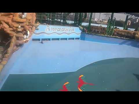 Surat amazia waterpark