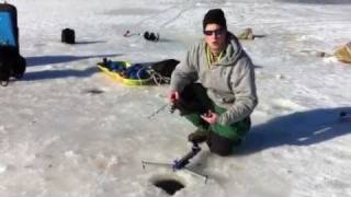 Video how to set up jaw jacker for Jaw jacker ice fishing