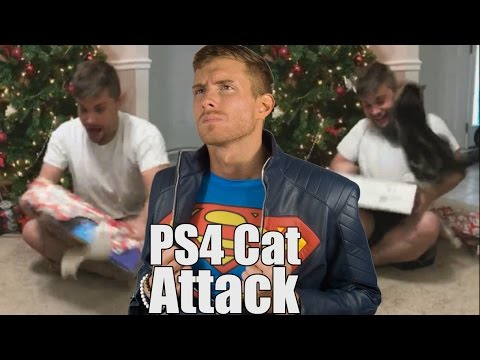 Guy Attacked By Cat For Christmas | SK Reacts