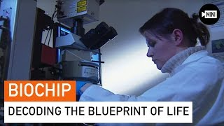 Life in a Biochip | Science