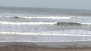 Plage des Dunes-Sud  (Brétignolles) proche de Brem-sur-Mer