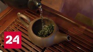Китайские ученые заинтересовались геномом российского чая - Россия 24