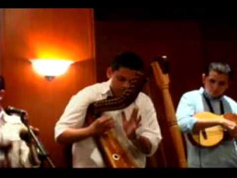 Grupo llanero Araguaney Joropo Ventiao Canción Puerto Miranda Angel Custodio Loyola