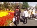 (Alternate Soundtrack) Trip to Japan 2016 - Day 13 -  Kyoto -  Osaka  - Kyoto