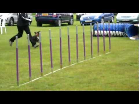 Twiglet&Donna@BATS/C4-5 Jumping