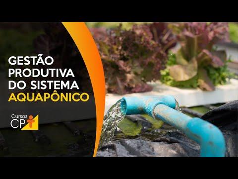 Clique e veja o vídeo Como fazer uma gestão produtiva eficiente de um sistema aquapônico