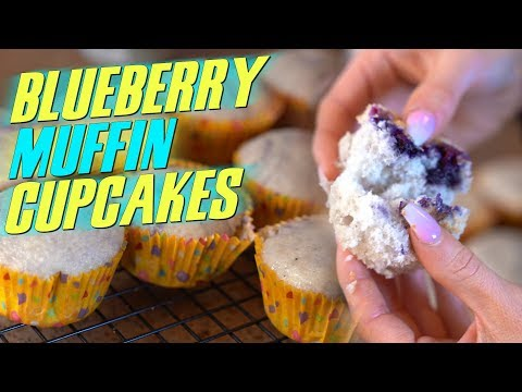 4 Ingredient LOW FAT Blueberry Muffin Cupcakes! | Tiger Fitness