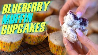 4 Ingredient LOW FAT Blueberry Muffin Cupcakes!   Tiger Fitness