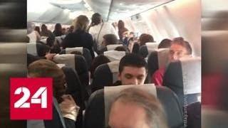 Из-за дерущегося пьяного авиадебошира самолет экстренно посадили в Сочи - Россия 24