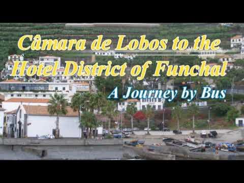 Câmara de Lobos to Funchal Lido by Bus