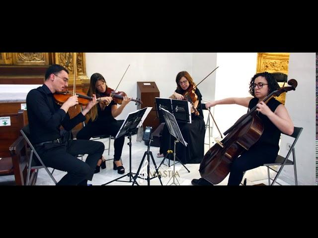 Rey Leon 🟢 | Musica para Comuniones | Musica Primera Comuniones | Musical Mastia