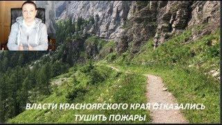Власти Красноярского края отказались тушить пожары. № 1462