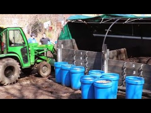Full Service Organics: Organic Soil Composting at St. John's University