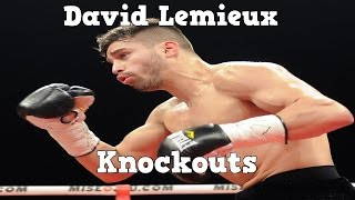 David Lemieux - Power (highlights / Knockouts 2015)