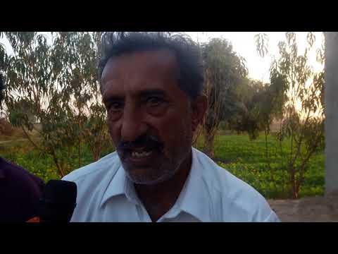 Interview Muhammad Zulfqar Arian Fruit Farm kasuwal by Dr Naveed CnnUrduUS