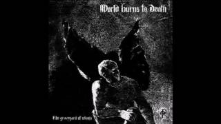 Watch World Burns To Death Open Wound video