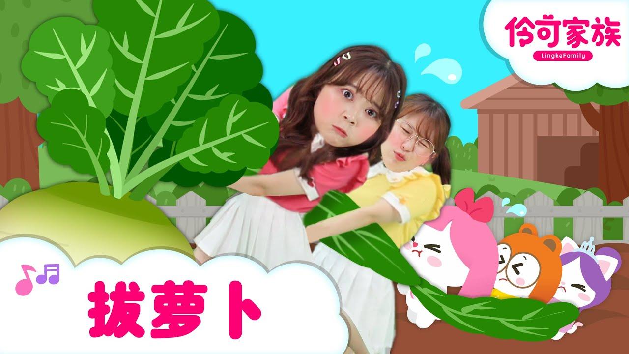 伶可家族兒歌 拔蘿蔔 Harvest Radish song - Lingco family song