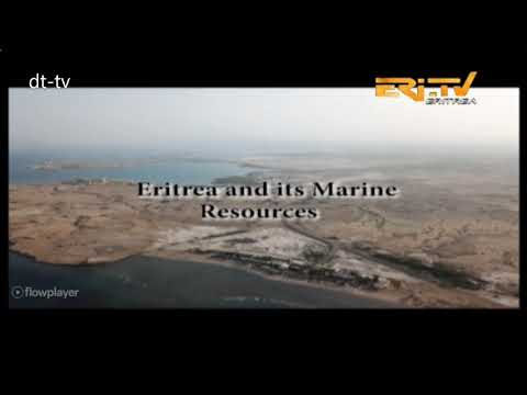 In Focus - Eritrea and its Marine Resources - The Red Sea