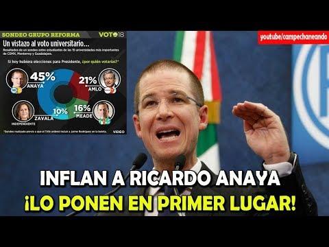 ¡Extra! Reforma pone en Primer lugar a Ricardo Anaya - Campechaneando
