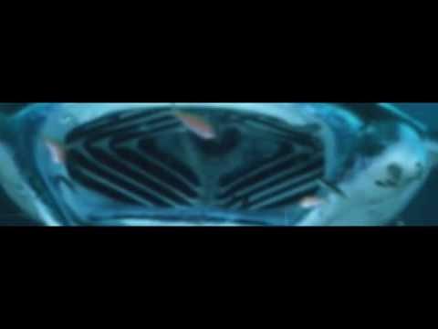 "Multimedia Show ""Ocean Experience"" by Cedric Pytel"