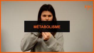 Santé - Métabolisme