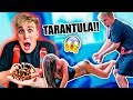GIANT TARANTULA PRANK ON MY GIRLFRIEND!!