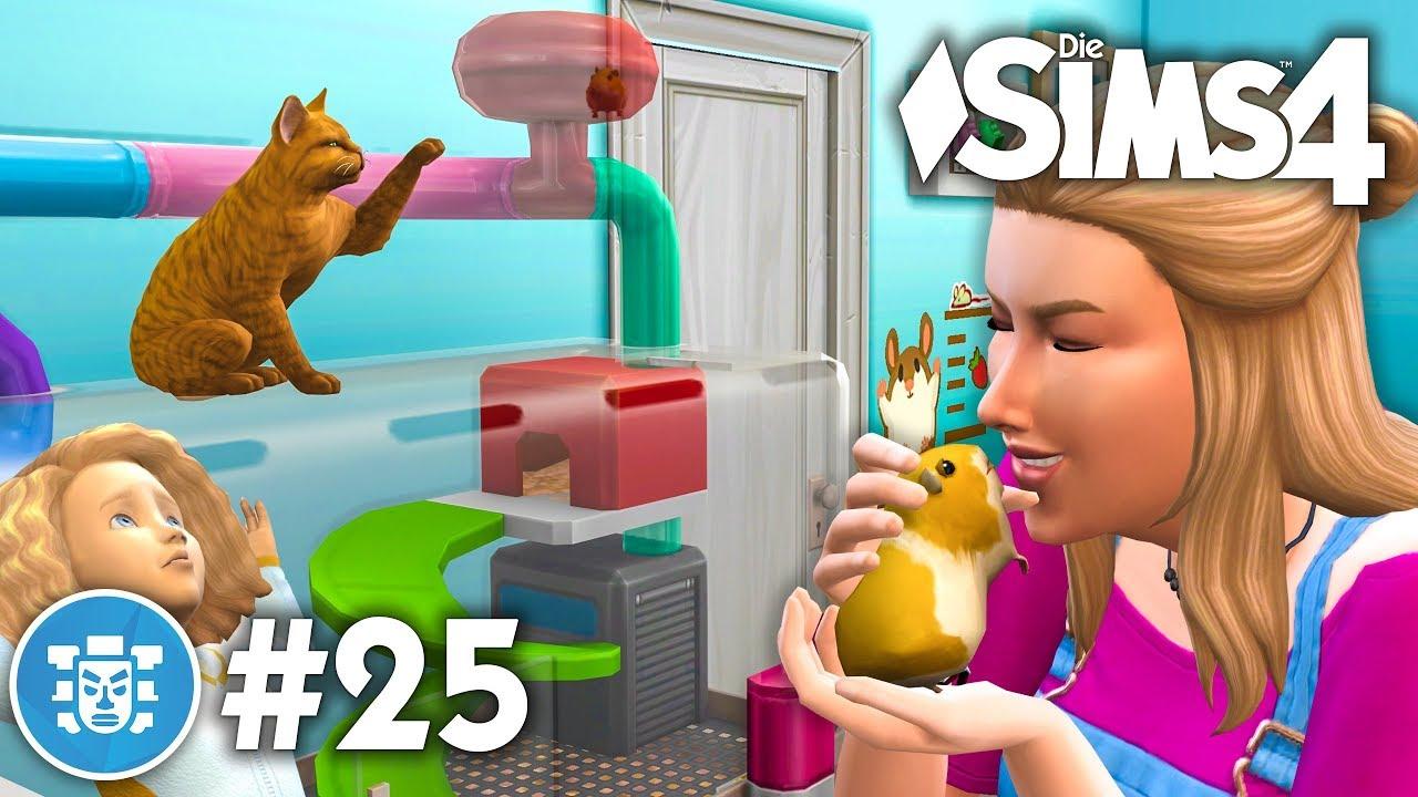 Kind Katze Im Hamster Fieber Let S Play Die Sims 4 Dschungel Abenteuer Gameplay Pack 25 Youtube