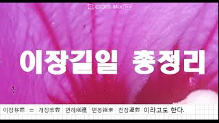 누구8 2022 이장 길일 총정리 개장 면례 면봉 천장 선꽃 옙운