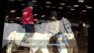 dila kara's horse life
