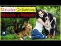 Uno de los mejores animales para adoptar - Relación entre animales y personas