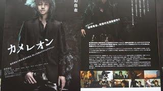 カメレオン 2008 映画チラシ 2008年7月5日公開 【映画鑑賞&グッズ探求...