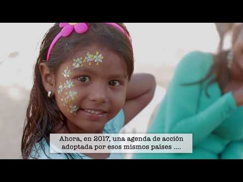 Sustainable Health Agenda for the Americas 2030