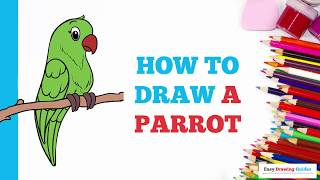 How to Draw a Parrot in a Few Easy Steps: Drawing Tutorial for Kids and Beginners