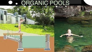 How to Design an Organic Pool in Scotland (and Help Colonise the Moon)