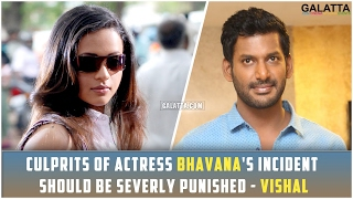 Culprits of Actress Bhavana's Incident Should Be Severly Punished - Vishal