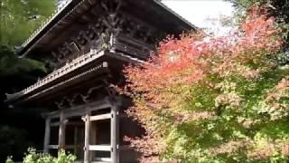 鎌倉・英勝寺の紅葉