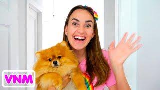 Vlad và mẹ trao đổi thú cưng mèo và chó